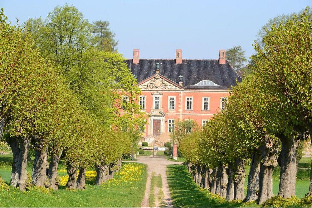Lindenallee Schloss Bothmer Klütz